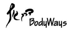 דרך גוף